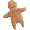 HTTP cookie, web cookie, browser cookie