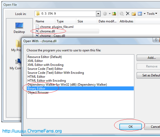 Open chrome.dll in Microsoft Visual Studio 2005