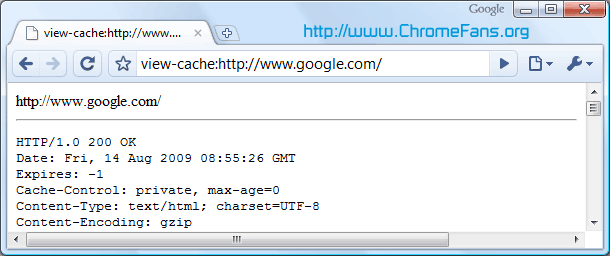 Google About Page - view-cache:URL